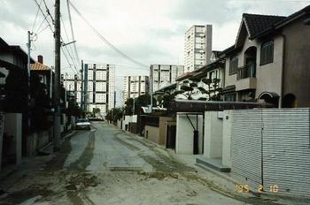 道路は噴砂の跡。住宅は傾いている.jpg